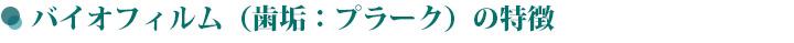 chishiki19