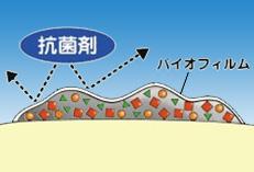 chishiki20