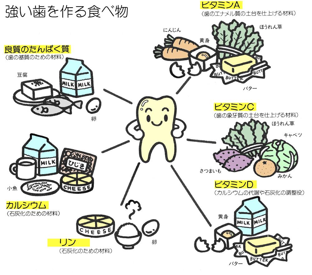 骨 を 強く する 食べ物 「骨を丈夫にする」飲み物や食べ物には何がある?